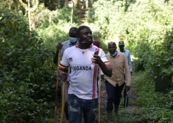 Akon described his Gorillla tracking experience as an amazing one (PHOTO/Courtesy).