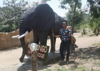 A tourist at Kikorongo Safari Lodge in Kasese district admires an elephant sculpture at the entrance of the hotel, February 2020. Photo by Felix Basiime (2)