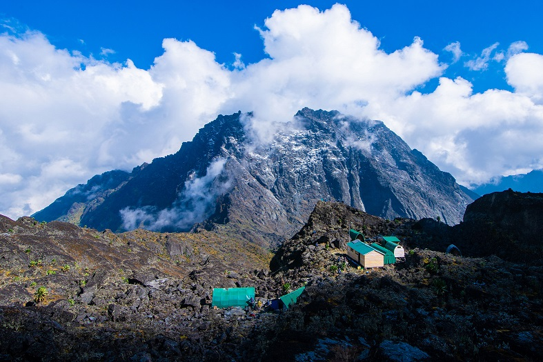 Margherita Camp (4,485 metres) with Mt. Baker (4,844 metres) in the background. Mt. Baker is one of the 6 massifs making up the top of Mt. Rwenzori. The other five massifs are Mt. Stanley, Mount Speke; Mount Emin; Mount Gessi and Mount Luigi di Savoia.   Margherita Camp is proximally located between the three tallest Rwenzori massifs i.e., Mt. Stanley (5,109 metres); Mt. Speke (4,890 metres) and Mt. Baker (4,844 metres) and is usually the last sleepover before conquering them (PHOTO/Courtesy).